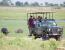 Unforgettable Okavango Delta and Chobe