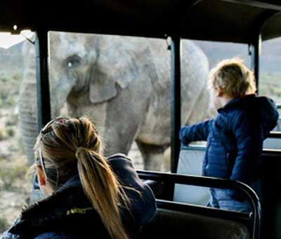 Mother and child observing a wild elephant from the inside of a safaribus